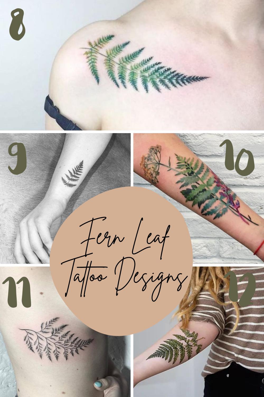 Fern Leaf Tattoo Designs