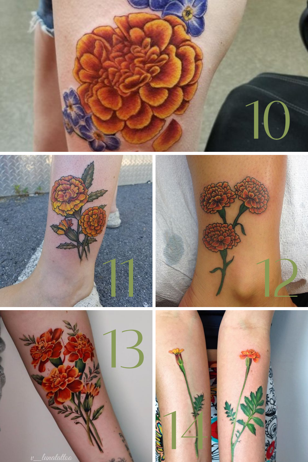 Marigold Flower Tattoos Photos
