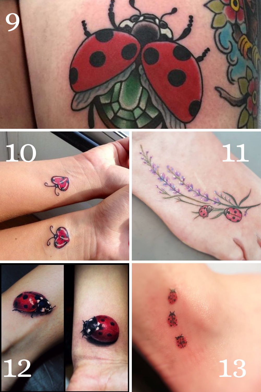 Colorful Ladybug Tattoos