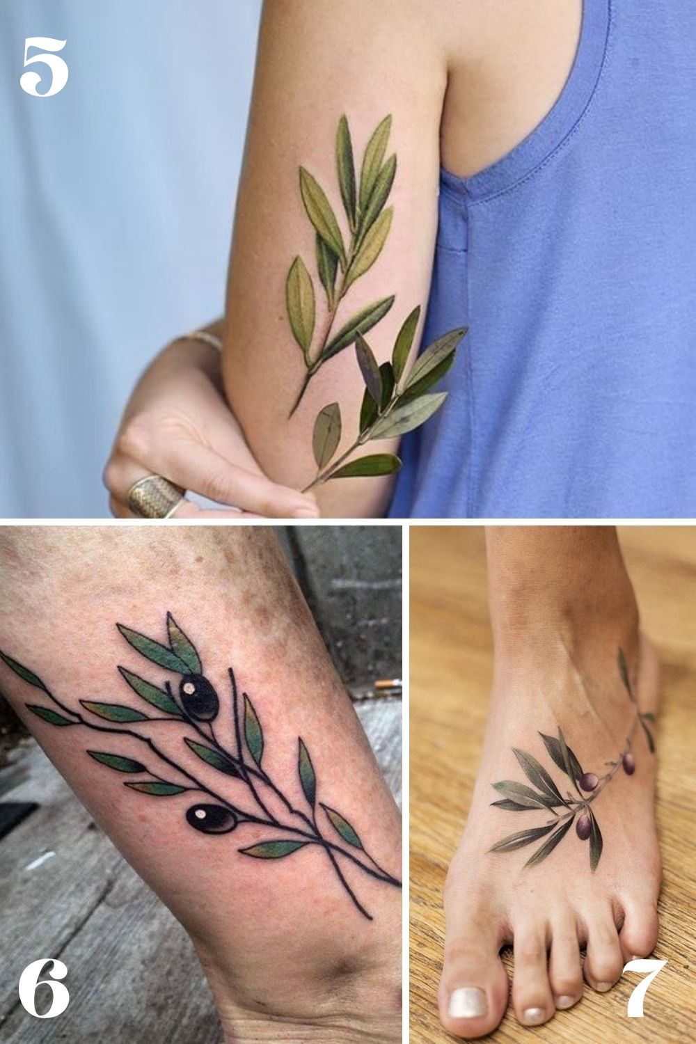Simple Olive Branch Tattoo