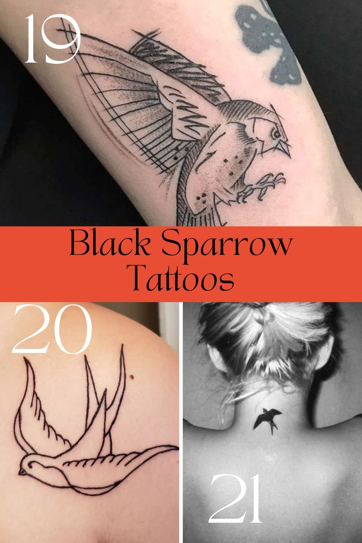 Black Sparrow Tattoos Meaning