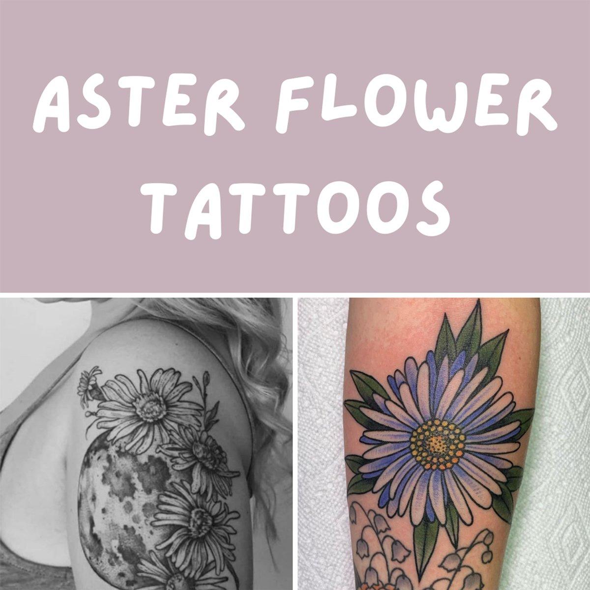 Aster Flower Tattoos