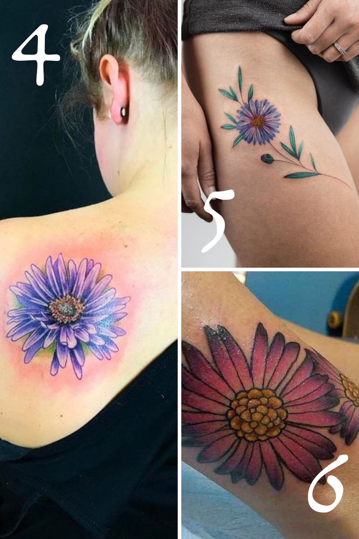 September Birth Flower Aster Tattoo Ideas