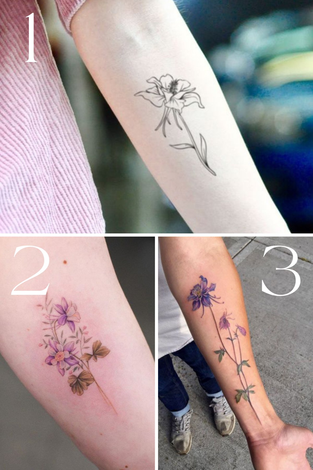 Tattoo Of Columbine Flower