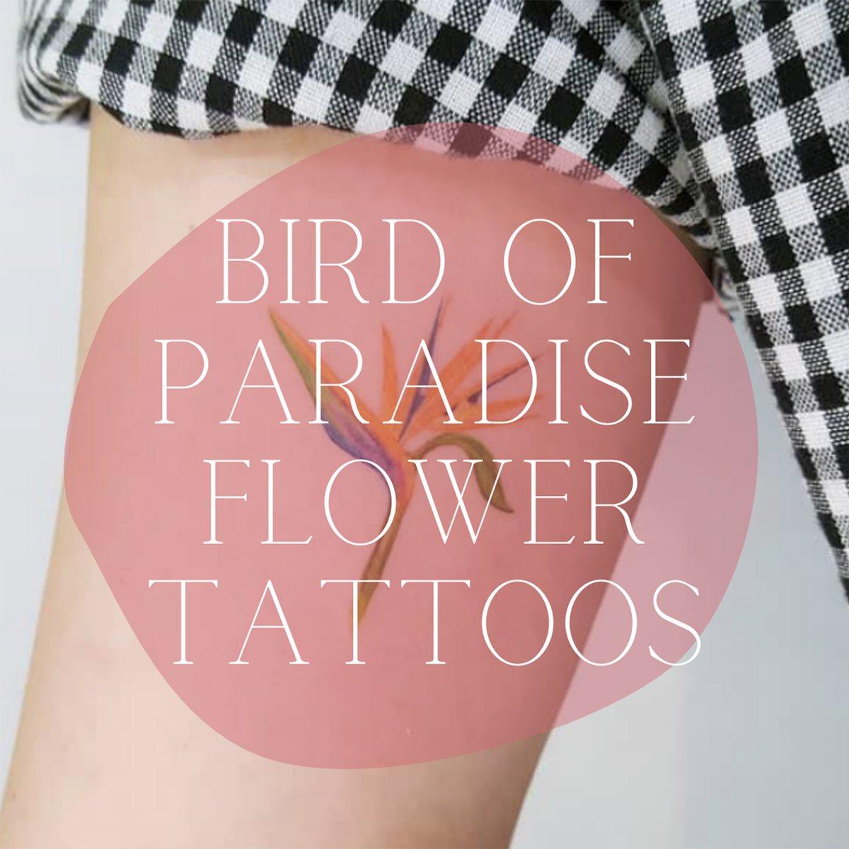 Bird of Paradise Flower Tattoos