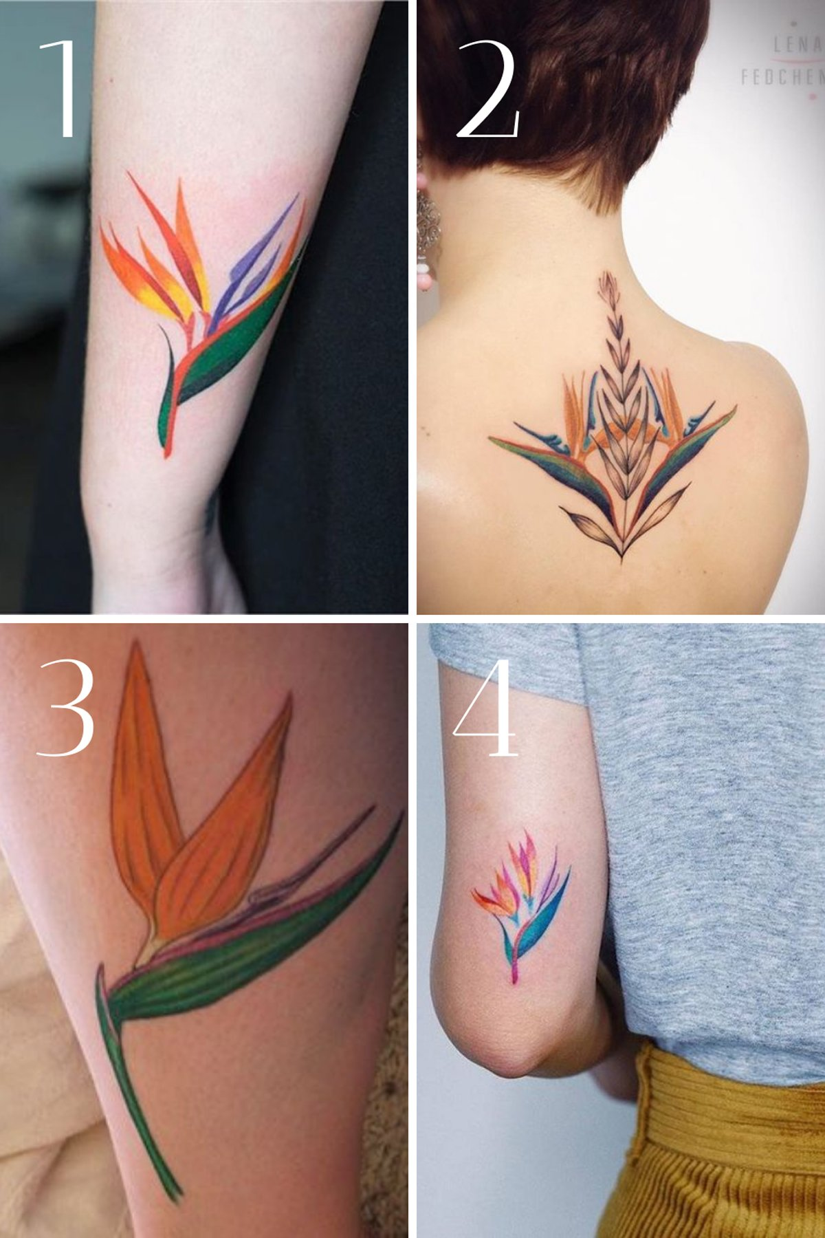 Bird of Paradise Flower Tattoo Designs