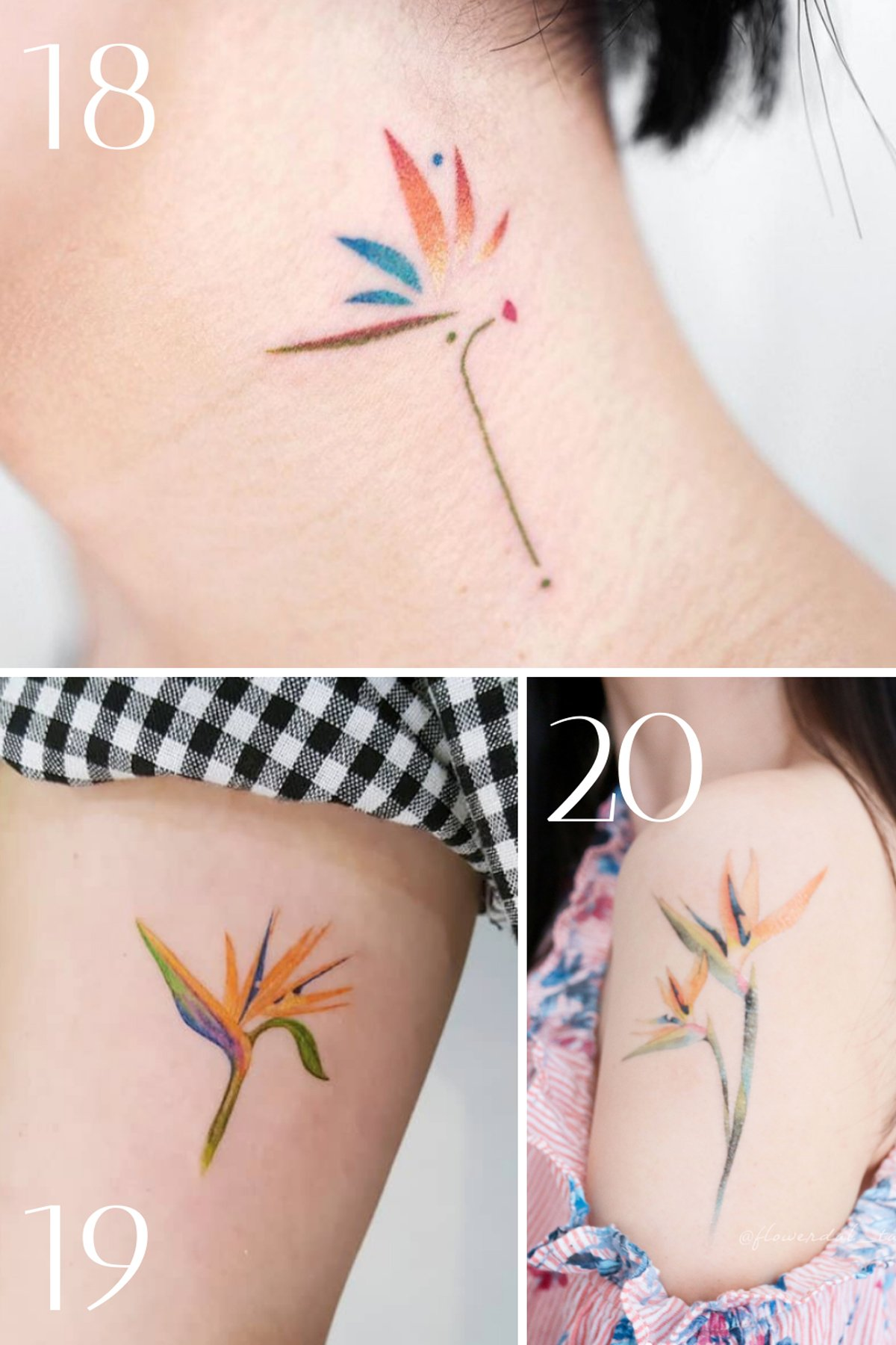 Small Colorful Hawaii Flower Tattoos