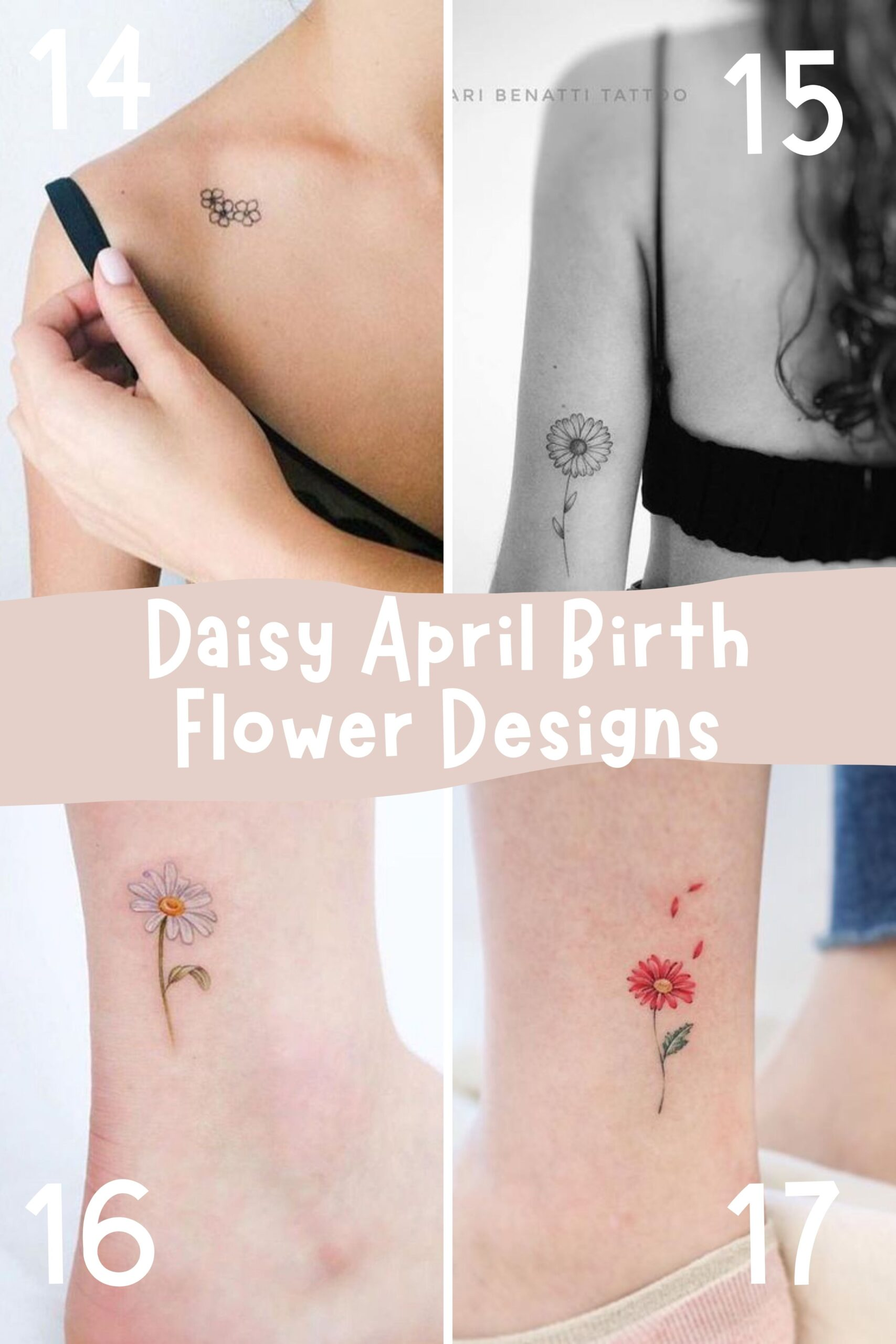 Daisy Flower Designs