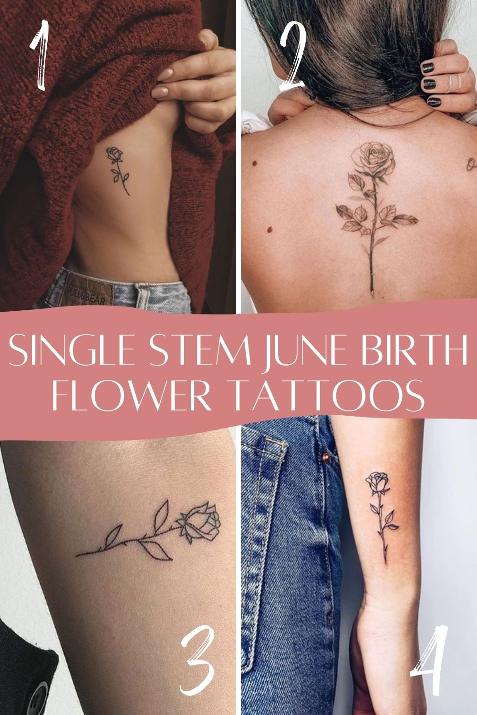 June Birth Flower Single Stem