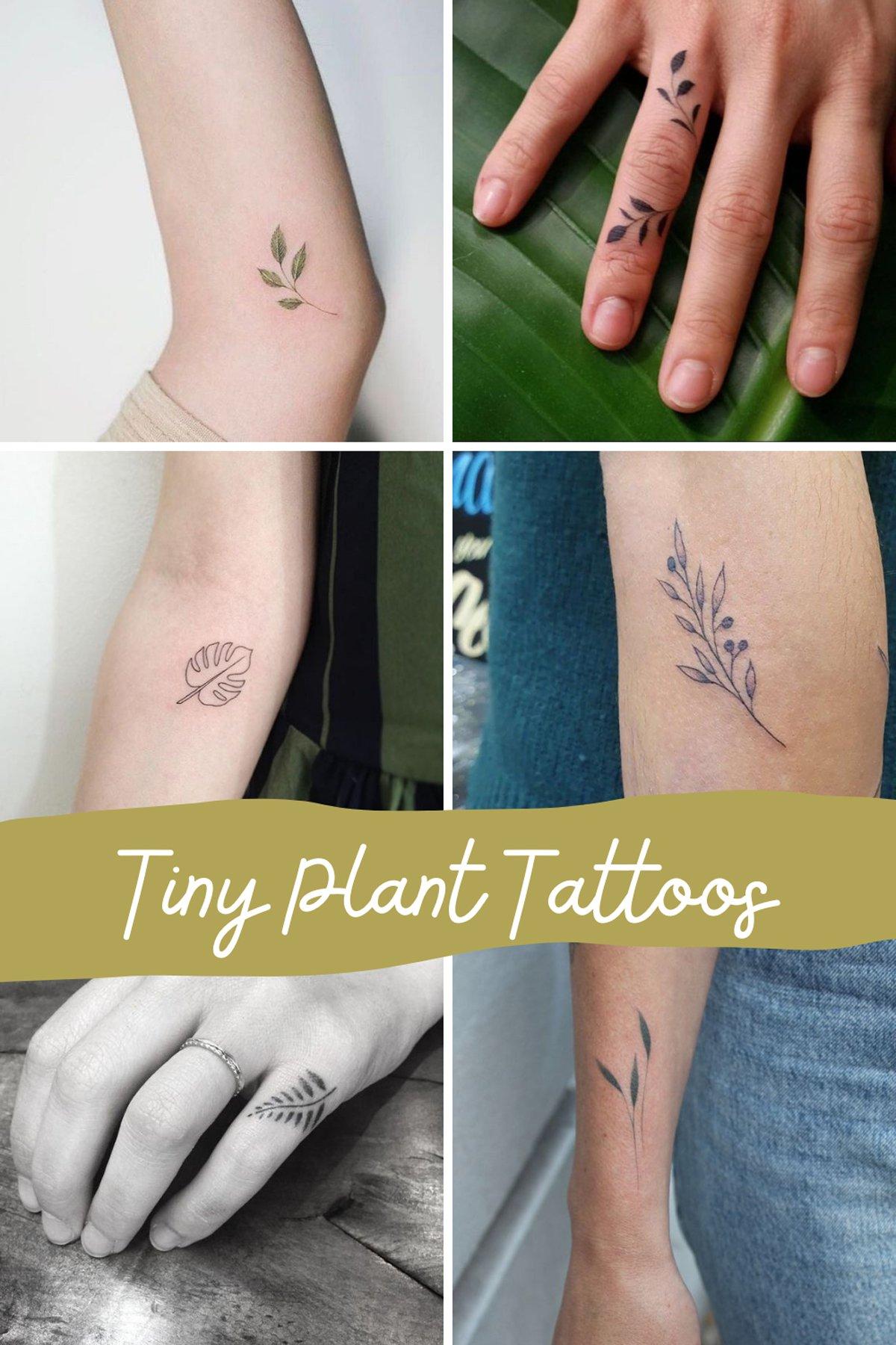 Tiny Plant Tattoo Ideas